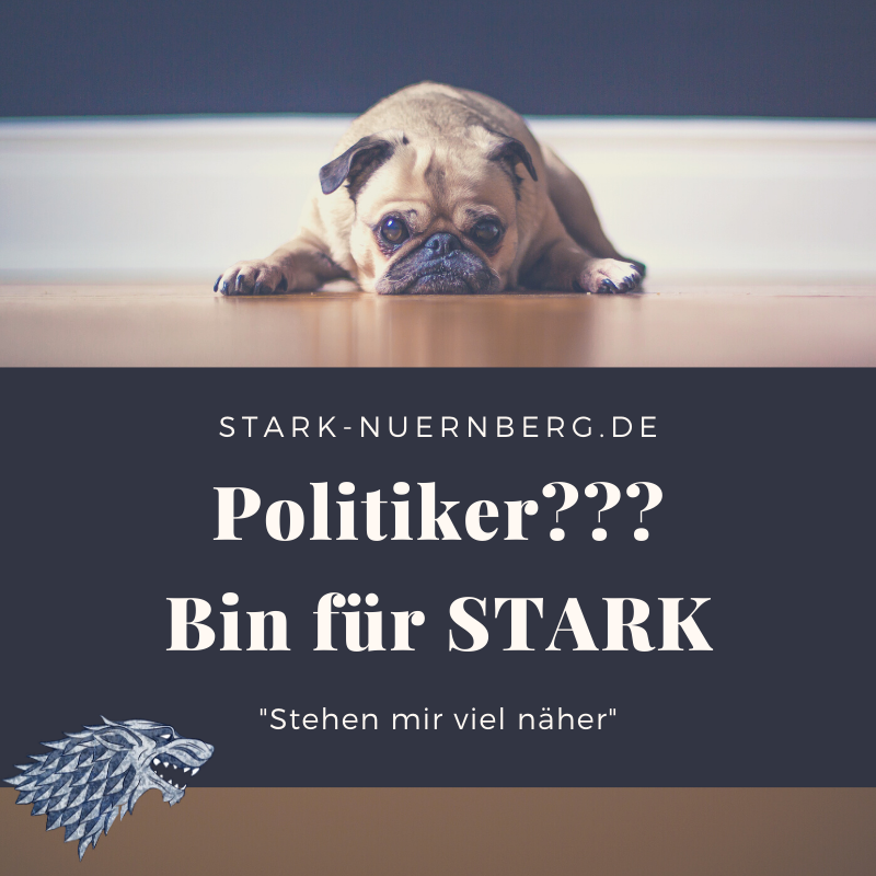 Stadt, Nürnberg, Wahl, Stadtrat, Oberbürgermeister, Politik, Siegfried Schüller